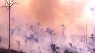 Les incendies en Amazonie ont augmenté de 84 % en raison de la déforestation croissante, selon l'agence brésilienne de recherche spatiale.