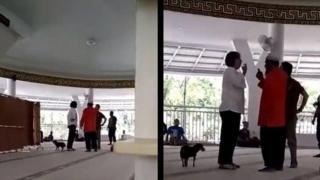 masjid dan anjing