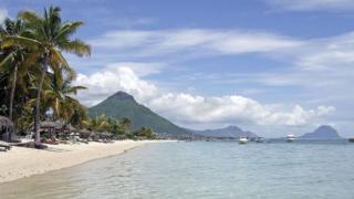 Des cocotiers bordent la plage de Flic en Flac sur l'île Maurice.