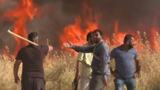 بعد سلسلة حرائق اجتاحت مساحات زراعية في سوريا، تلتهم النيران حقول القمح في شمال شرق البلاد. فما السبب وراء هذه الظاهرة؟