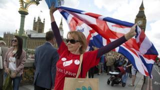 A Vote Leave campaigner