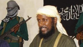 Abu Mansur alikuwa naibu kiongozi wa al-Shabab na pia alihudumua kama msemaji wa kundi hilo.
