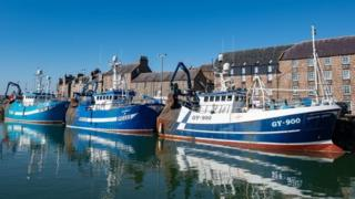 environment Fishing trawlers in Aberdeenshire