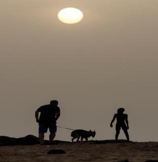 in_pictures A man walks with his pet dog at the beach before the curfew in Senegal