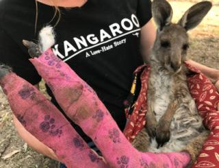 A WIRES volunteer holds a kangaroo with burnt feet pads