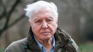 science Sir David Attenborough