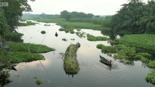 المزارعين في بنغلادش يلجئون للمزارع العائمة لحماية مصدر رزقهم