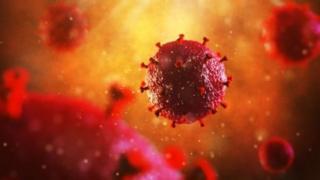 HIV病毒