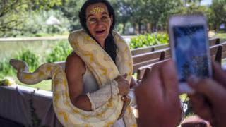 in_pictures A woman posing with a python at the Medieval Fayre in Johannesburg, South Africa - Saturday 7 March 2020