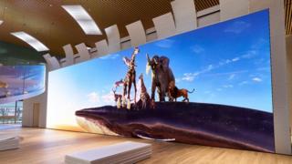 Sony 16K display