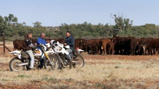 Workers from the Anna Creek cattle station take a break on the Oodnadatta Track in outback South Australia