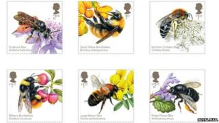 The stamps feature bees from across the UK