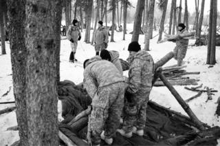 Creating a shelter