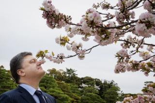Насолодився цвітінням сакури у Кіото, Японія 5 квітня 2016 року