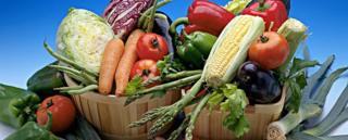 ظرف سبزیجات