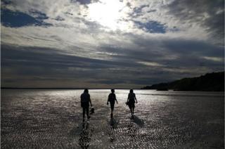 Kirkdale beach walk