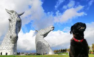 Your pictures of Scotland: 11 - 18 October