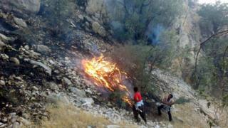 آتش در دامن طبیعت ایران