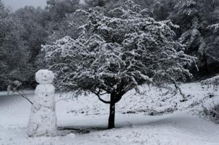 Snowman at Mill Green, Dollar