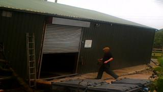 Man apparently carrying fox cub into a shed
