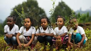 Ethiopian children planting tree seedlings