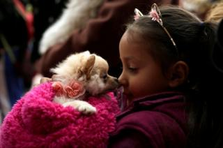 A girl interacts with her pet while waiting for a blessing.