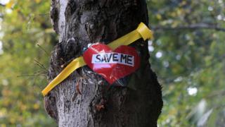 Save me sign on tree in Sheffield