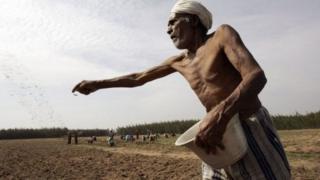 गरीब शेतकरी