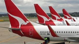 Qantas planes docked in a row at Melbourne Airport