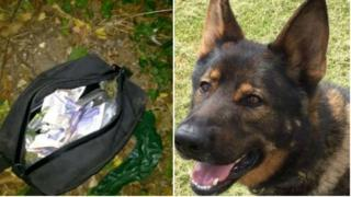 The bag of money and drugs and Otto the police dog