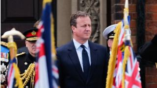 David Cameron at an Armed Forces Day parade
