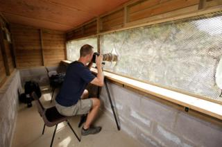 Lawrence Ball in the osprey hide