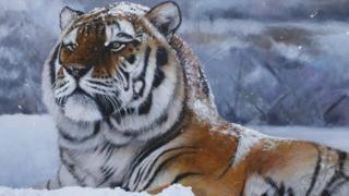 Snow King worth £32,000