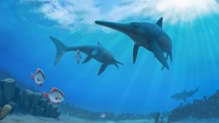 The ichthyosaurs swam alongside early sharks and bony-finned fishes