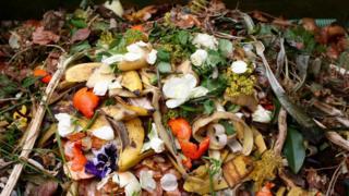 Alimentos jogados no lixo