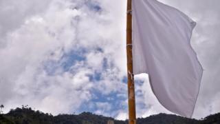Bandeira branca em área das Farc