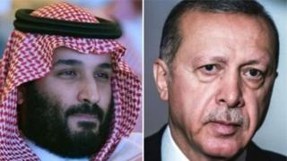सऊदी अरब और तुर्की