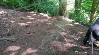 Fishing wire line at Cavehill Country Park