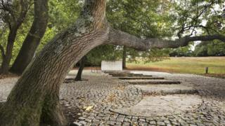 Kennedy Memorial landscape