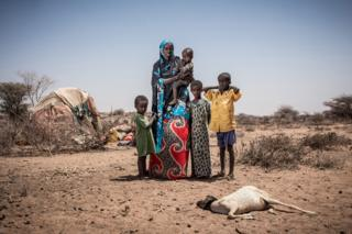 Milgo stands with her four children in front of a sheep that has died due to the drought