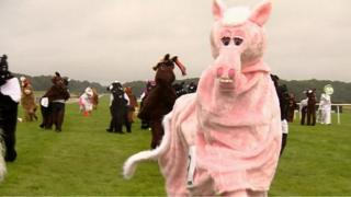 Pantomime horses