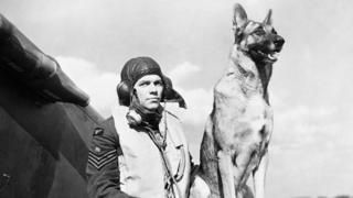 pilot & dog