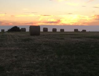 Newly baled straw at sunset