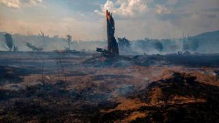 environment Fires in Brazil