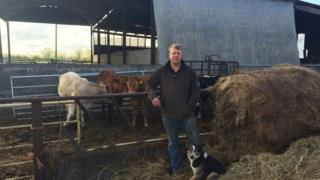 James Hall, beef farmer, Fordgate near Bridgwater
