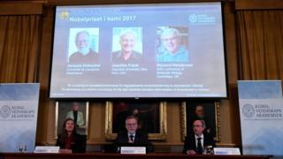 Нобелевскую премию по химии получили Жак Дюбоше, Йоахим Франк и Ричард Хендерсон