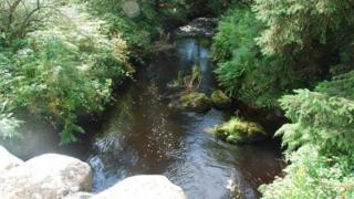 Afon Wen river