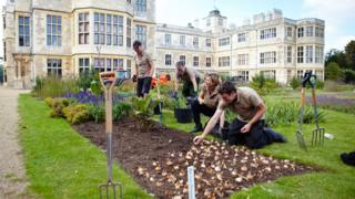 Gardeners planting bulbs at Audley End