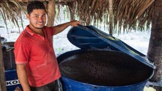 Tonel para fermetação da mandioca