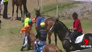 A video still of jockey Dylan Caboche about to hit a horse prior to a race